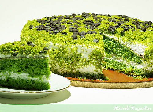 ıspanaklı-kek-tarifi