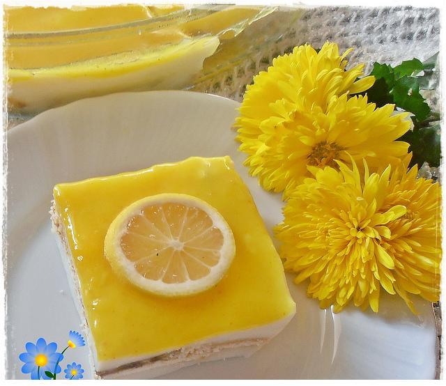 limon jöleli muhallebi